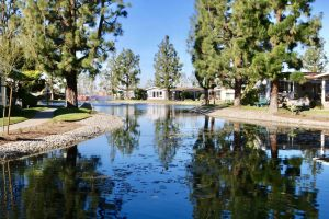 La-Mirada-Park-jan-23-10-43-52-pm