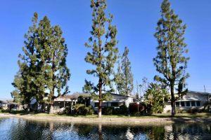 La-Mirada-Park-jan-23-10-47-12-pm