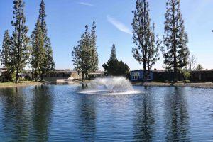 La-Mirada-Park-jan-23-10-53-54-pm