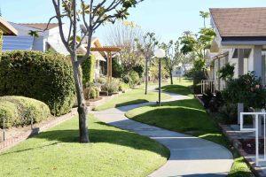 La-Mirada-Park-jan-23-11-16-43-pm
