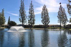 La-Mirada-Park-jan-23-11-21-39-pm