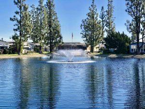 La-Mirada-Park-jan-24-9-54-02-am