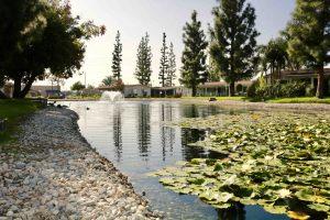 placentia-park-nov-07-11-48-15-pm