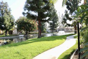 placentia-park-nov-07-11-59-40-pm